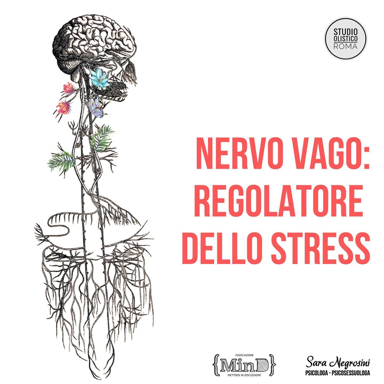 Nervo Vago: regolatore dello stress